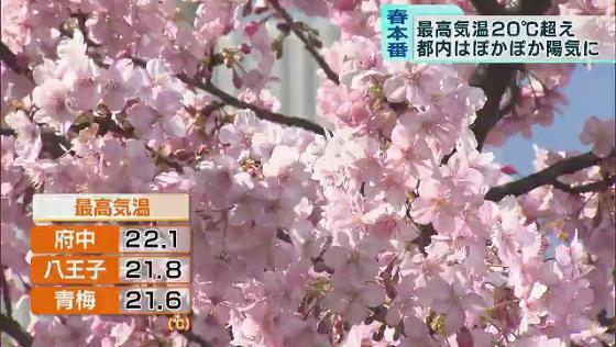 なっ た 回 日 東京 何 の に 開始 都心 月 2 夏 で に 以来 は 統計